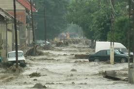 Image result for inundatii
