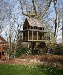 Building a Tree House or Fort  The Ultimate Backyard Structure    Building a Tree House or Fort  The Ultimate Backyard Structure