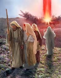Resultado de imagem para IMAGENS DE CAPRINOS E OVINOS, RUMINANTES BÍBLICOS.