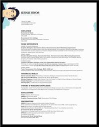 examples of resumes example simple resume for job application 89 astounding simple sample resume examples of resumes