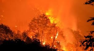 Resultado de imagen para Incendios en Chile