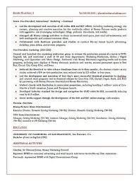 strategic marketing executive resume examplestrategic marketing executive resume sample