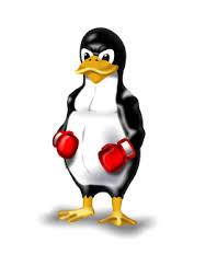 <b>Материнская плата ASRock Z390M</b>-ITX/AC. Совместимость с linux