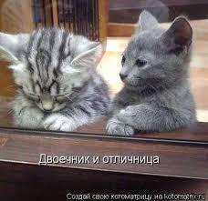 Шимкив рассказал, какие ведомства медлят с планом выполнения Соглашения об ассоциации с ЕС - Цензор.НЕТ 6725