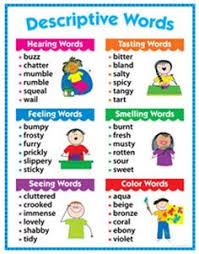 anchor charts charts and for kids on pinterest descriptive words chart