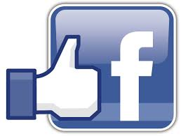 Facebook la Cour des Saveurs