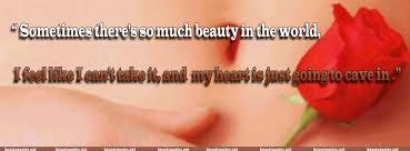 Resultado de imagen para american beauty quotes