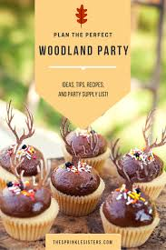 baby shower themes for boys the sprinkle sisters like all our parties the first thing we did when we started planning was to make a list of woodland party ideas and write down everything we had on hand