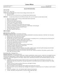 jewelry resume objective associate resume resume examples resume resume sample s representative resume examples tax