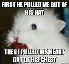 Vengeful Rabbit memes | quickmeme via Relatably.com