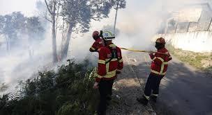 Autarca de Boticas preocupado com incêndios que podem hipotecar meios