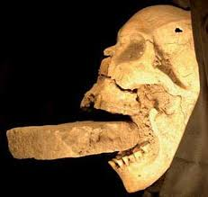 Resultado de imagen para vampire skull