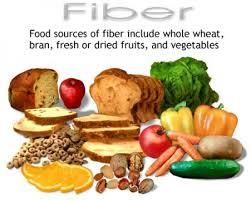 kaya serat dan fiber