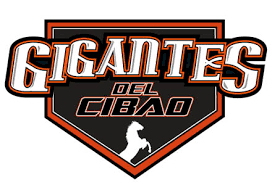 Image result for equipos los gigantes republica dominicana