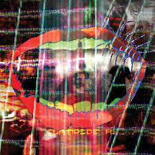 <b>Animal Collective</b> - '<b>Centipede</b> HZ' - NME