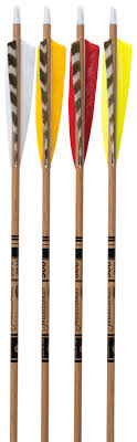 <b>Gold Tip</b> Traditional Carbon Arrows