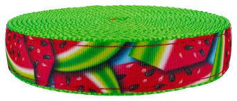 Buy <b>3</b>/<b>4 Inch</b> Summer Melon Ribbon on <b>Hot</b> Lime Green Nylon ...