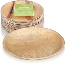 ... Pack of 25 Plates Eco-Friendly Disposable Plates made from ...