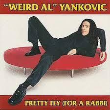 <b>Pretty Fly for</b> a Rabbi - Wikipedia