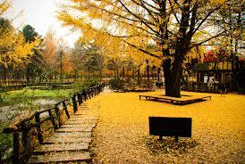 teach english in korea travel and teach recruiting inc teach english in yongin city korea travel and teach