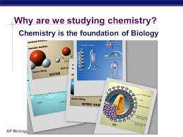 Image result for the chemical context of life