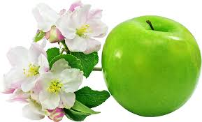 نتیجه تصویری برای عکس میوه ها