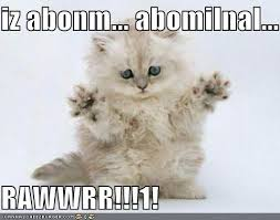 Abominable Snowman | Cute n funny balls of fur | Pinterest | Cat ... via Relatably.com
