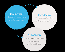 the plan csum objectives and outcomes
