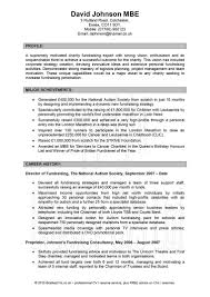 resume format for it professionals equations solver resume it professional sle homework help sites for pas