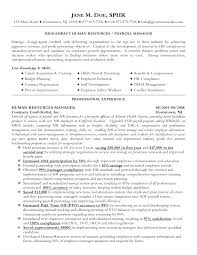 human resources manager resume pdf human resource manager resume    resume template