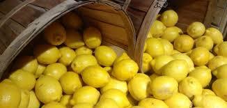 نتيجة بحث الصور عن الليمون المجمد