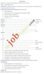 cover letter art resume format 3d artist resume format artist cover letter artist resume format art resumeart resume format extra medium size