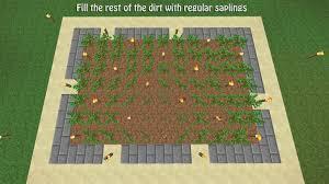 step 6 oak saplings aesthetic lighting minecraft indoors torches