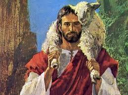 Resultado de imagem para imagens da ovelha perdida