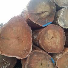 <b>Tropical Wood</b> Logs