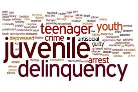 what is the importance of remedies for delinquency