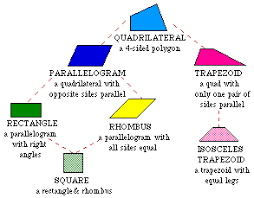 polygonsthe  quot quadrilaterals tree diagram below shows you some different types of quadrilaterals and their properties   parallel lines are lines that are the same