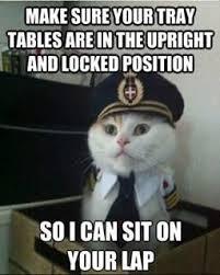 Nautical Captain Cat | Funny Cats | Pinterest | Pilots, Nautical ... via Relatably.com