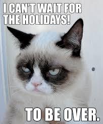 Cat | Angies Grapevine via Relatably.com