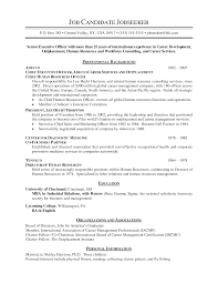 ceo resume pdf chief executive officer resume ceo resum ceo resume ceo resume pdf
