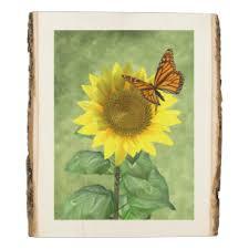 <b>Sunflower</b> And <b>Butterfly</b> Art & Wall Décor | Zazzle