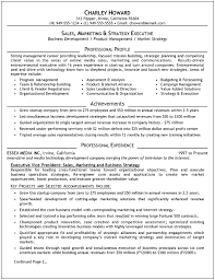 Curriculum Vitae Sales Manager Sample  resume of operations