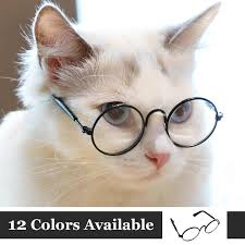 <b>Fashion</b> Cat Glasses Transparent Eye wear Sunglasses for <b>Small</b> ...