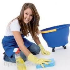 شركة تنظيف شقق بالطائف