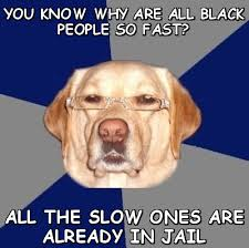 You know why are all black people so fast? all the slow ones are ... via Relatably.com