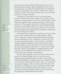 resume  sample essay outline examples argumentative on animal    breathtaking an example of a argumentative essay resume