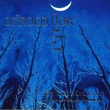 Taliesin Orchestra: Orinoco Flow - The Music of <b>Enya</b> - Music on ...