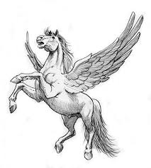 Risultati immagini per da cavallo pegaso