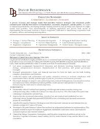 executive summary resume examples template executive summary resume examples