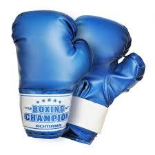 <b>Перчатки</b> боксерские для детей 5-7 лет <b>Romana</b> купить с ...